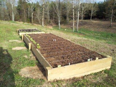 Planter Portfolio